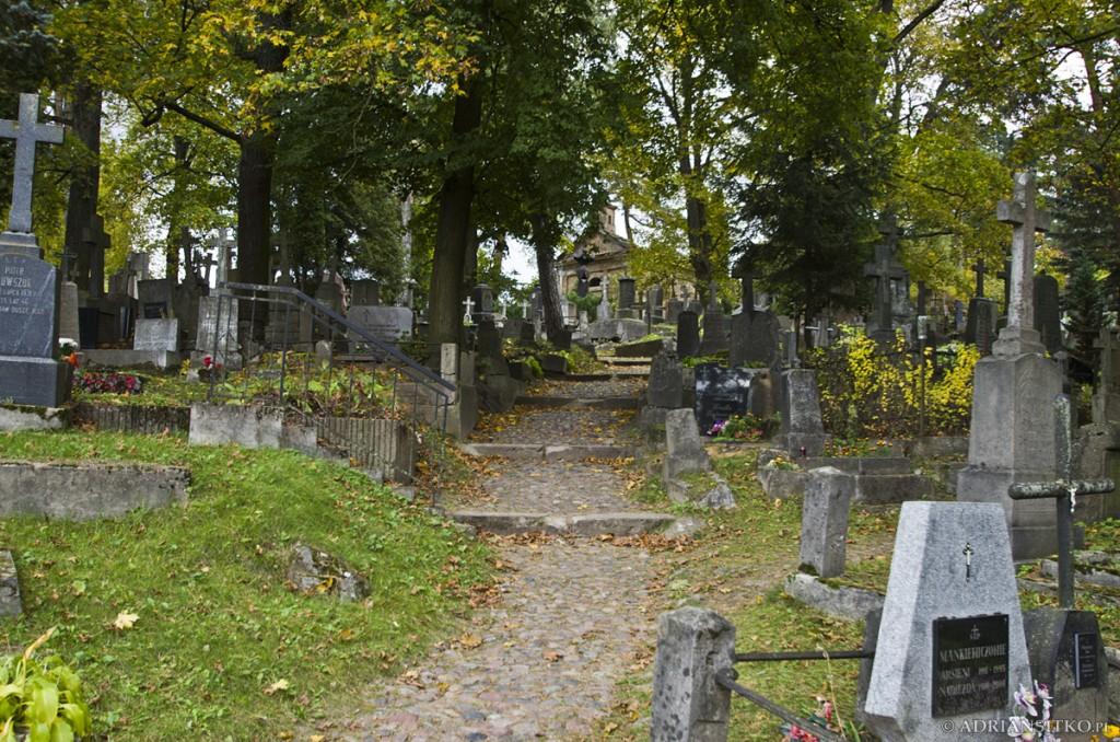 Widok ogólny cmentarza